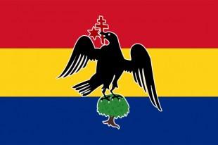 Steag Țara Românească